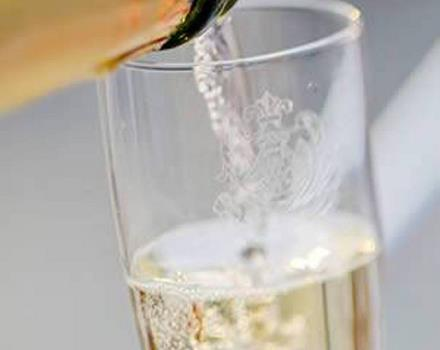 Conegliano is one of two cities that are the center of the production of the famous prosecco, sparkling wine.