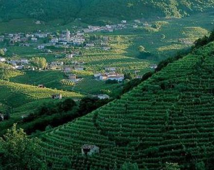 A breathtaking view on the beautiful hills surrounding prosecco Conegliano area